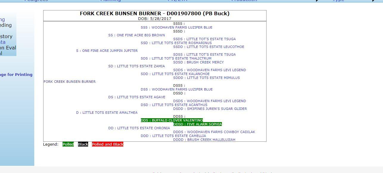 Bunsen Burner.JPG